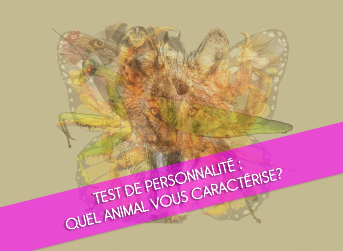 Test de personnalité : Quel animal vous caractérise?